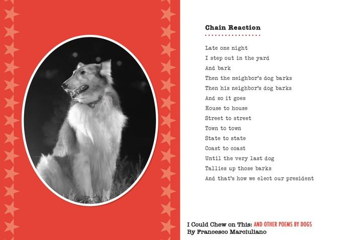 iccot-election-poem