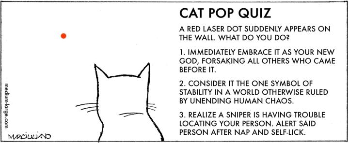 cat-red-dot-quiz-1200