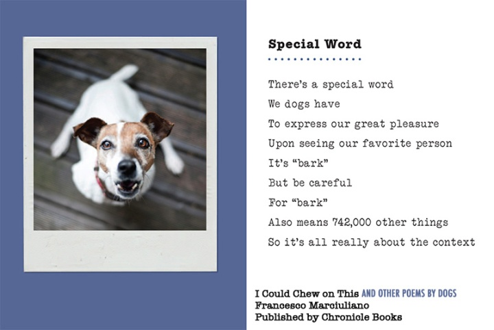 iccot-special-word-larger-type